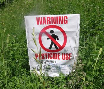 Risultati immagini per grano pesticidi